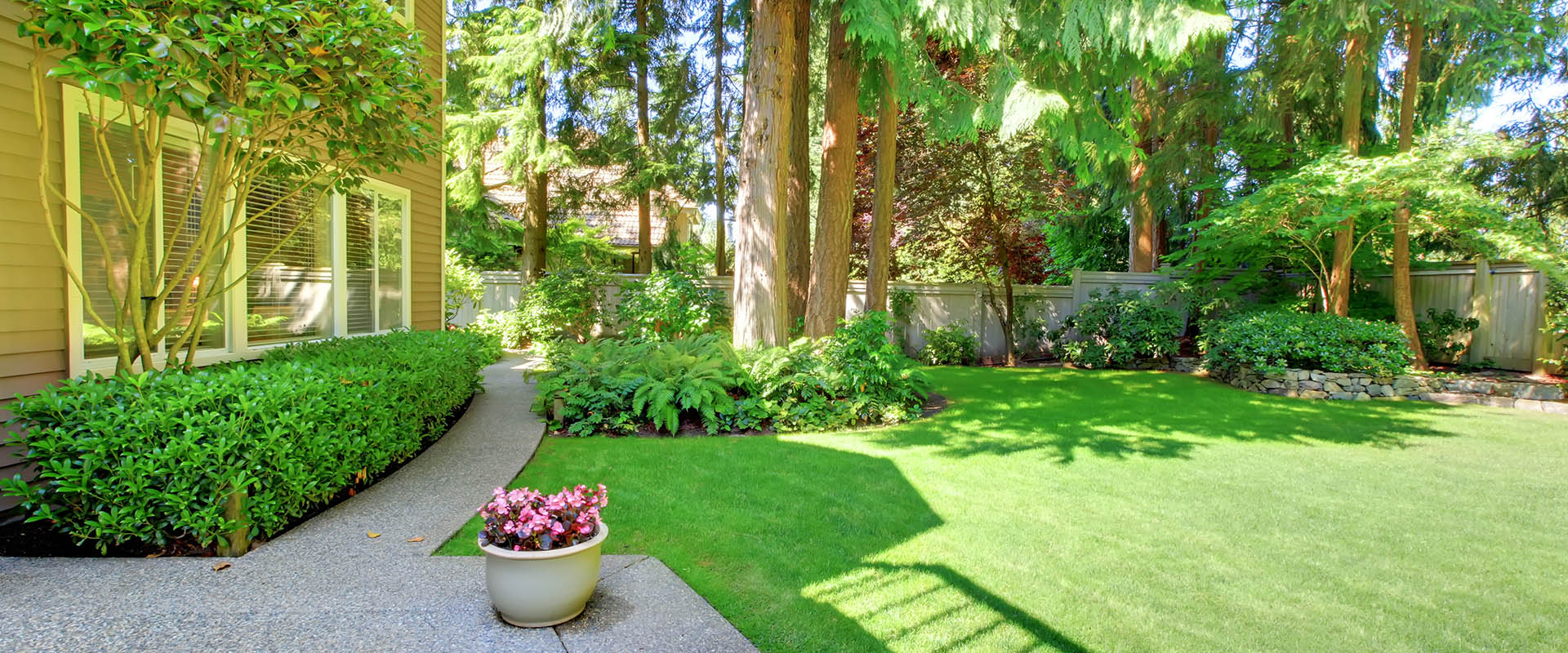 tree service articles